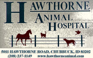 logo 2017 Hawthorne Animal Hospital