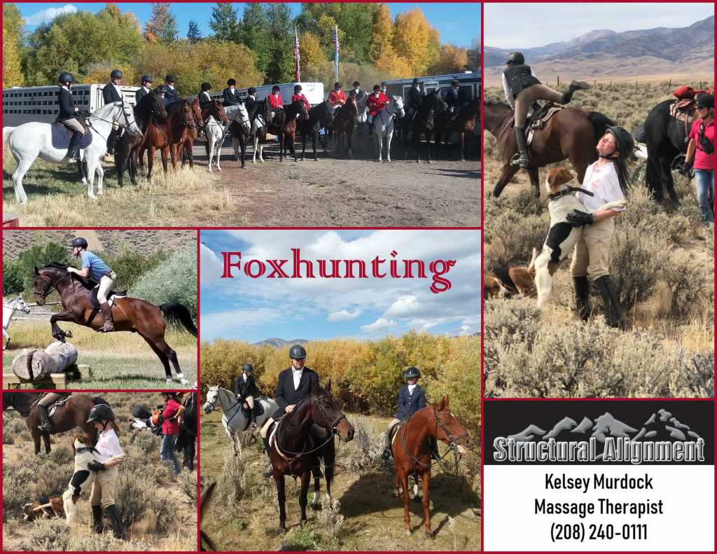2019 Foxhunting